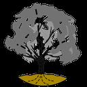 Baum-Session-2