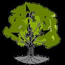 Baum-Session-3