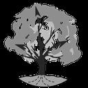 Baum-Session-4